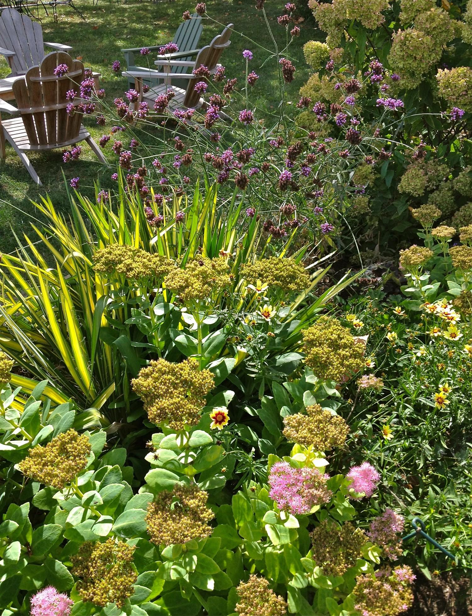 English Flower Garden Border