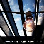 Lightbulb and Trellis